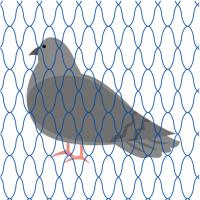 tori in net2