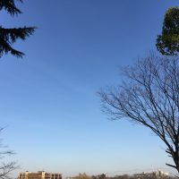 冬の良い天気