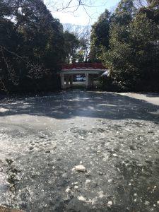 大宮氷川神社の凍った池