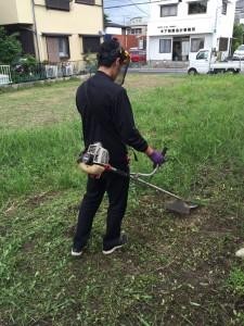 雑草の草刈り