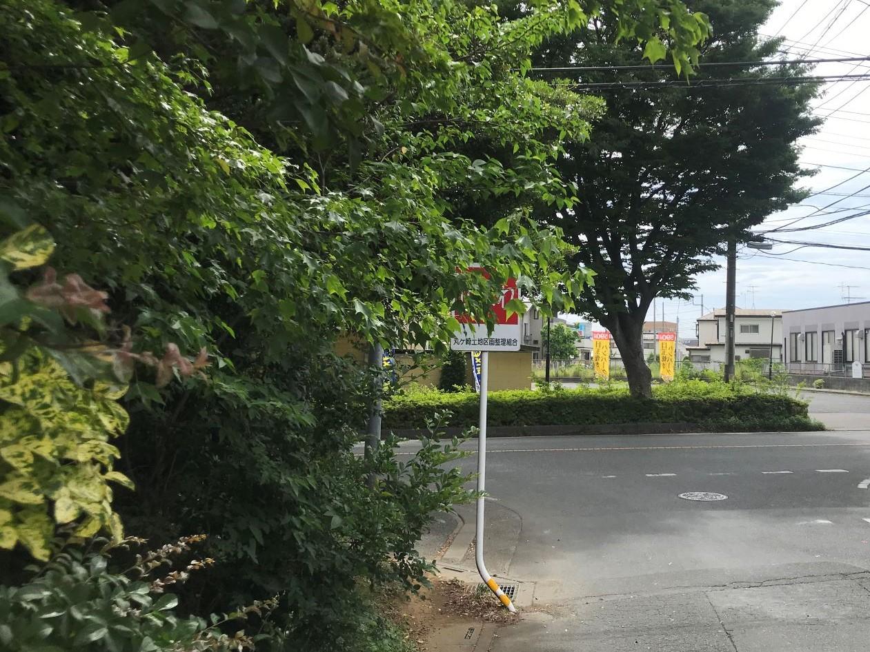 木で隠れた標識