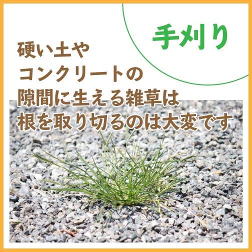 硬い土やコンクリートの隙間に生えた雑草は大変
