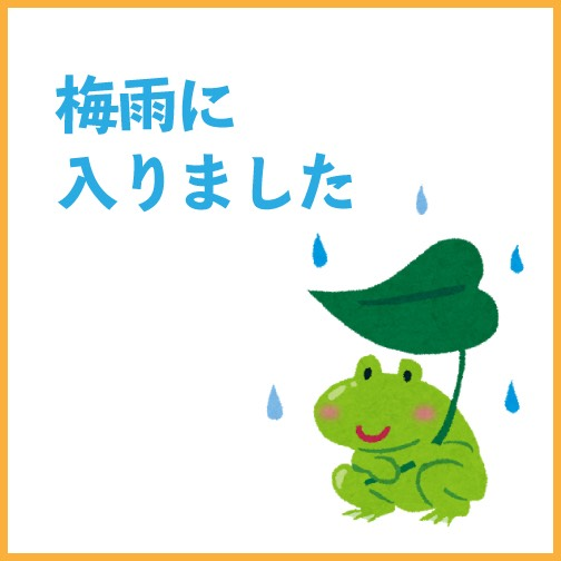 梅雨に入りました